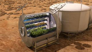 Η NASA σχεδιάζει την μελλοντική  καλλιέργεια τροφίμων  σε διαστημόπλοια και σε άλλους πλανήτες, ως συμπλήρωμα διατροφής για τους αστροναύτες. Νωπά τρόφιμα, όπως τα λαχανικά, παρέχουν τις απαραίτητες βιταμίνες και τα θρεπτικά συστατικά απαραίτητα στην μακρόχρονη παραμονή στο διάστημα