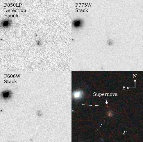 supernova_mingus