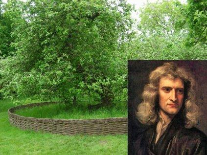 H μηλιά του Νεύτωνα στο πατρικό του σπίτι στο Woolsthorpe