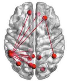 H ανάγνωση μυθιστορημάτων βελτιώνει τις εγκεφαλικές συνδέσεις