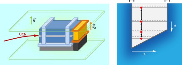 (αριστερά) Η πειραματική διάταξη παγίδευσης νετρονίων. Υπερ-ψυχρά νετρόνια εισέρχονται στο χώρο μεταξύ δυο καθρεπτών που δρουν ως πηγάδι δυναμικού, εξαιτίας του οποίου το ενεργειακό φάσμα των νετρονίων είναι διακριτό. Ένας ανιχνευτής μετρά τα νετρόνια που εξέρχονται από την κοιλότητα των δυο καθρεπτών. Ο κάτω καθρέπτης έχει την δυνατότητα κατακόρυφης ταλάντωσης, γεγονός που δημιουργεί διεγέρσεις των νετρονίων.  (δεξιά) Διάγραμμα ενεργειακών σταθμών των εγκλωβισμένων νετρονίων μεταξύ των δυο οριζοντίων τοιχωμάτων υπό την επίδραση του βαρυτικού πεδίου