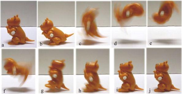 Το παιχνίδι-καγκουρό εκτελεί μια τούμπα προς τα πίσω:  η προετοιμασία του άλματος (a) και (b) το άλμα, όταν το παιχνίδι δεν έχει καμία επαφή με το έδαφος (c) έως (h) και η τελική φάση όταν το παιχνίδι ισορροπεί μετά την αρχική επαφή του με το έδαφος (i) και (j)