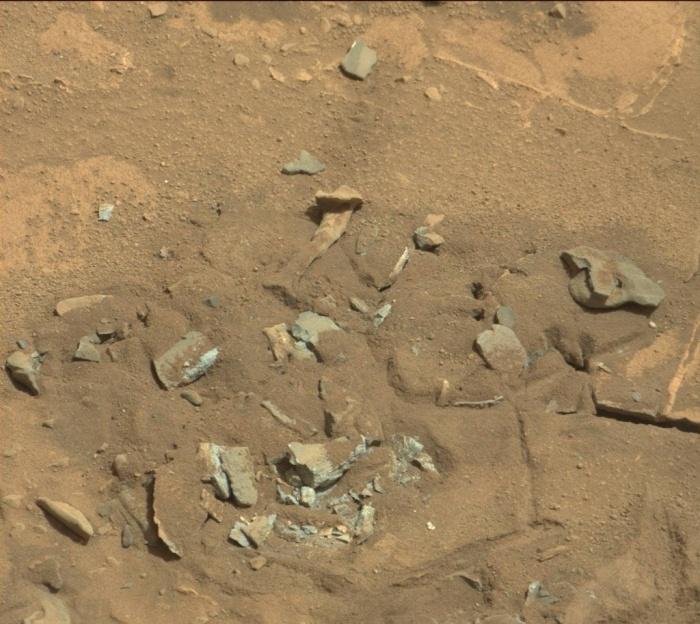 bone in mars