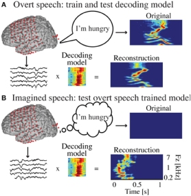 OvertCovertSpeechReconstruction