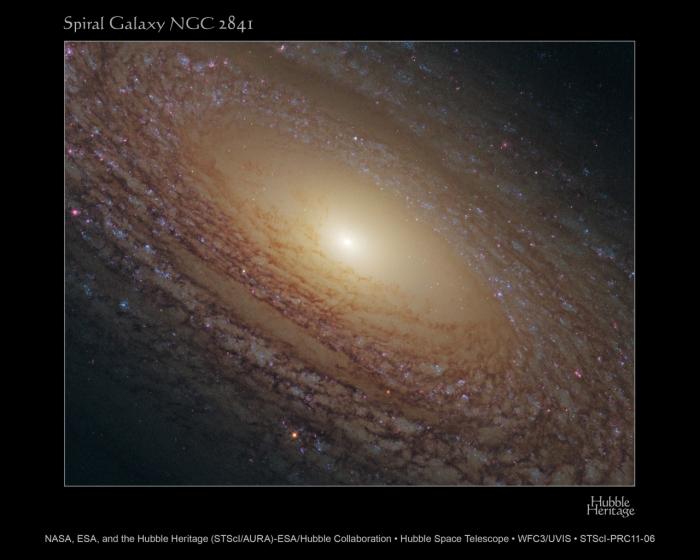 Στην εικόνα διακρίνεται ο σπειροειδής γαλαξίας NGC 2841 [φωτογρ. NASA, ESA, and the Hubble Heritage (STScI/AURA)-ESA/Hubble Collaboration, Acknowledgment: M. Crockett and S. Kaviraj (Oxford University, UK), R. O'Connell (University of Virginia), B. Whitmore (STScI), and the WFC3 Scientific Oversight Committee].