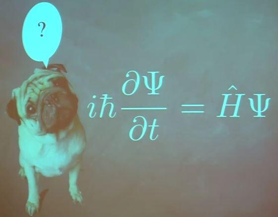Ο σκύλος του Schrödinger; (Μια διαφάνεια από την παρακάτω ομιλία του David Gross)