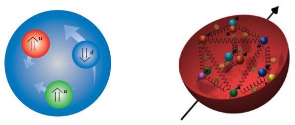 proton_quarks_ect