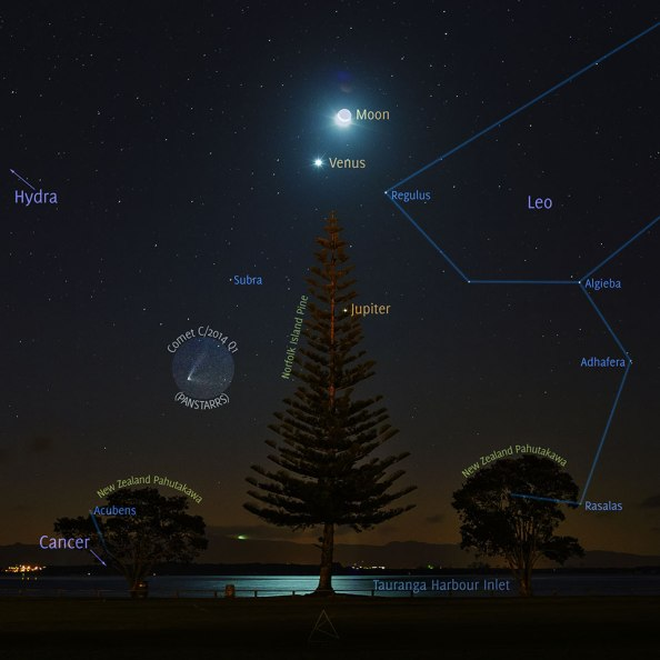 CometTree_Kamble_960_annotated