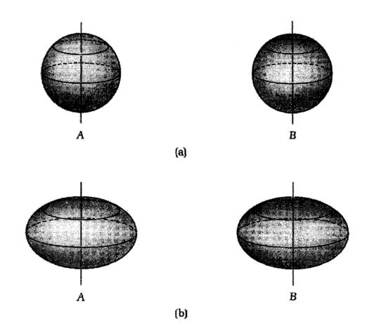 Στο (a) βλέπουμε δυο σφαιρικά αντικείμενα, το Α και το Β. Και τα δυο τείνουν να εξογκωθούν στον ισημερινό, εξαιτίας της παλιρροϊκής δύναμης που ασκεί το ένα στο άλλο. Αν επιπλέον είναι αναγκασμένα να παραμείνουν συμμετρικά γύρω από τον άξονα που διέρχεται από τους πόλους τους, όπως συμβαίνει στο (b), τότε μετατρέπονται σε πεπλατυσμένα σφαιροειδή.