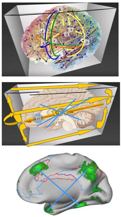 Η δραστηριότητα του εγκεφάλου σε μια υπερσφαίρα